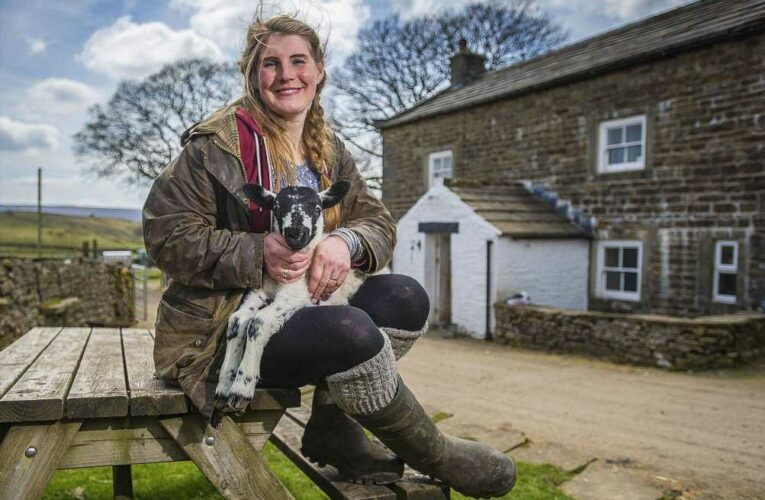 Inside Our Yorkshire Farm's Amanda Owen's life as a model before huge career change to become shepherdess
