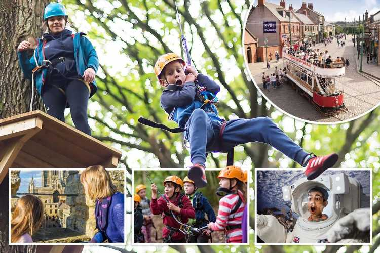 Make May half term fly by at full throttle with fun-filled experiences for all the family