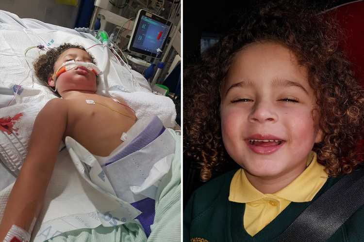 Mum relives moment son, 3, was hit by a bin lorry as sister gave CPR