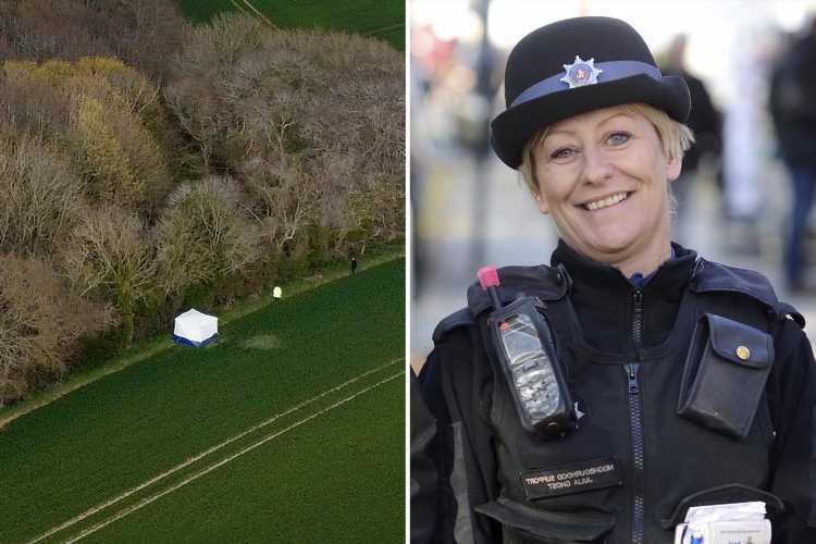 PCSO Julia James' murder: Cops arrest man 11 days after mum-of-two killed on dog walk