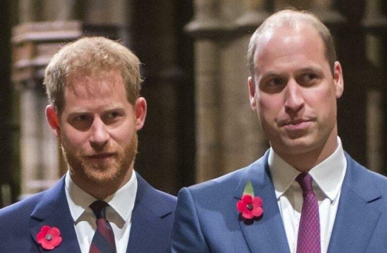Prince Harry, Prince William condemn BBC for 1995 Princess Diana interview
