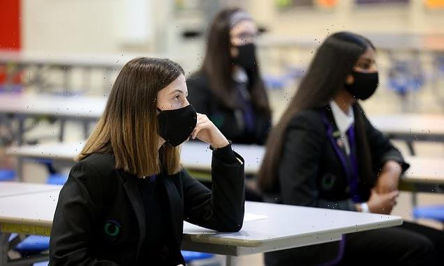 Secondary school pupils face longer terms and shorter holidays