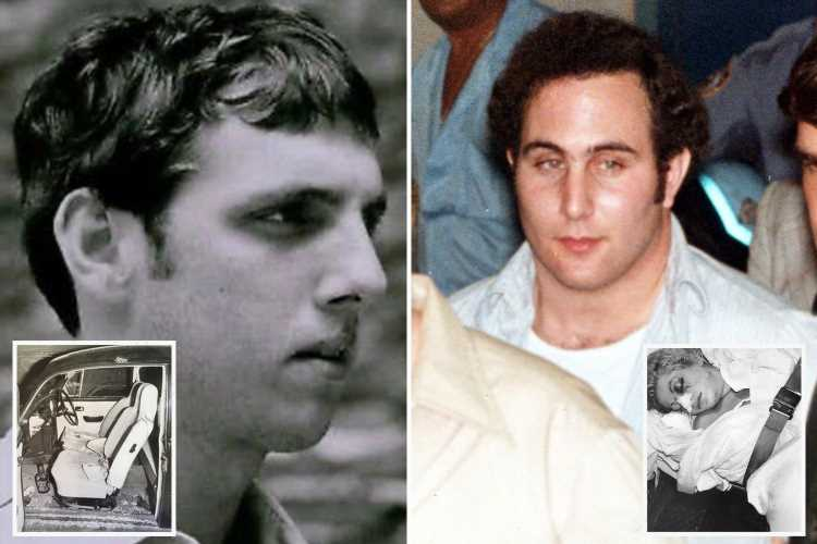 Survivor of 'Son of Sam' serial killer David Berkowitz says he was shot by 'occult priestess' accomplice who evaded cops