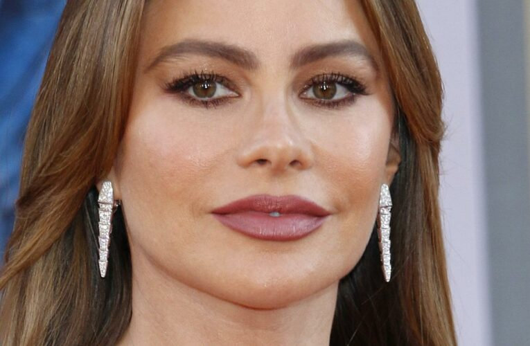 The Truth About Sofia Vergara's First Marriage