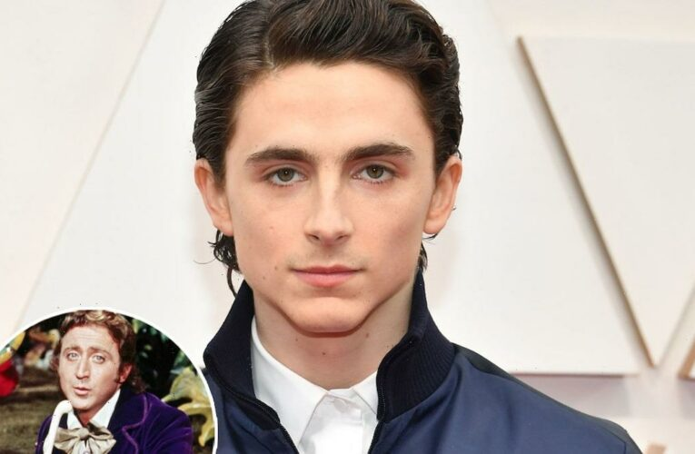 Timothee Chalamet to Play Willy Wonka In New Origin Story Prequel