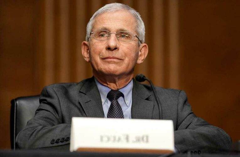 What did Fauci fund in Wuhan and other commentary