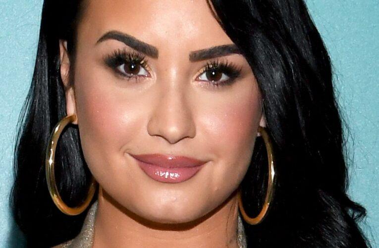 A Timeline Of Demi Lovato's Public Feuds