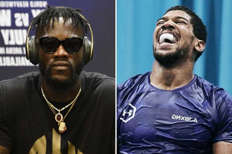 Anthony Joshua blasts Deontay Wilder as 'not an elite level fighter' and tells American to 'watch what he's saying'