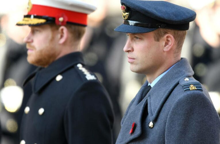 Battle of brothers: Diana's statue unveiling won't mend the rift between William and Harry