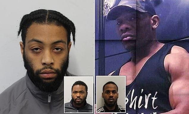 Bodybuilder's drive-by assassin is jailed for at least 28 years