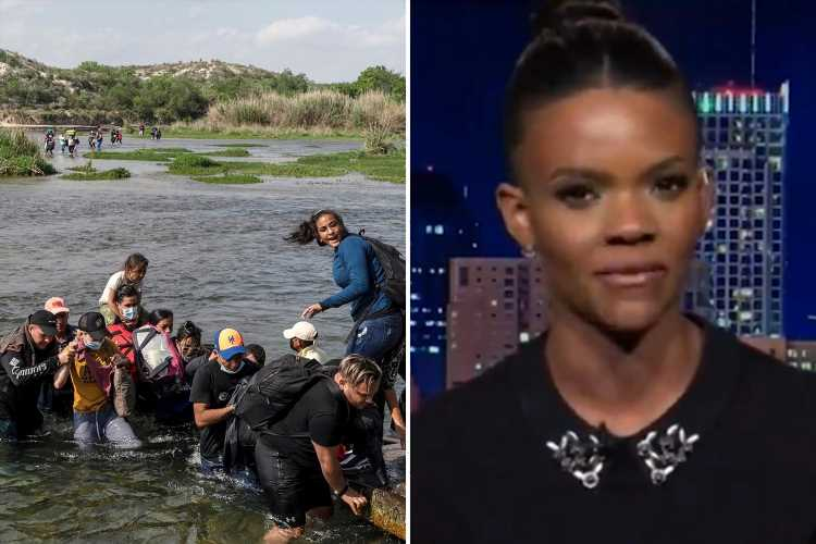 Candace Owens claims Biden WANTS illegal immigration to 'change demographics and get votes' on Tucker Carlson