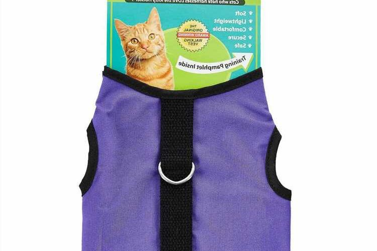 Cat Parents Call This the 'Best Harness Out There' –  Even If You Have an Escape Artist on Your Hands
