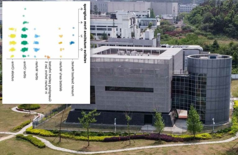 China deleted COVID-19 data in possible cover-up: virologist