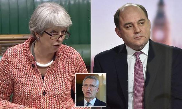Defence Secretary Ben Wallace backs Theresa May as next NATO chief