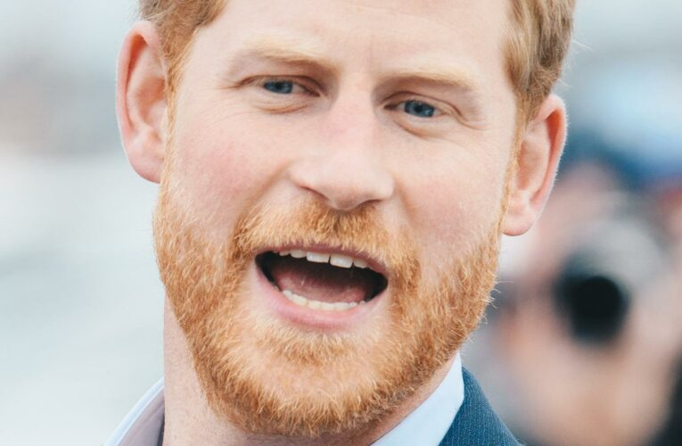 Did Prince Harry Ask For Permission To Use The Name Lilibet?