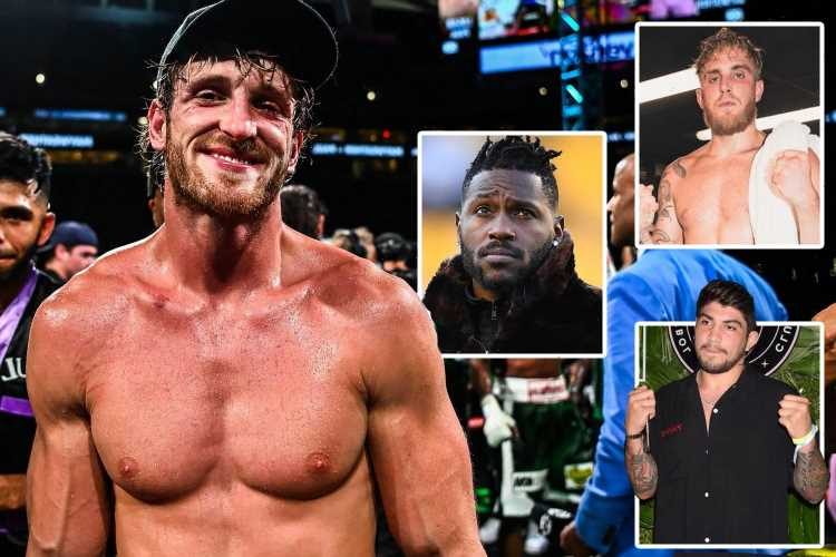 Five fights for Logan Paul after Floyd Mayweather including Chris Hemsworth, brother Jake and shock UFC switch