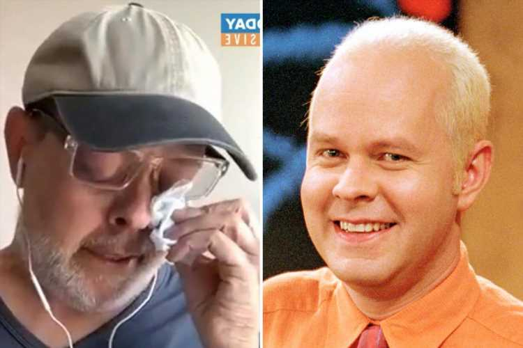 Friends star James Michael Tyler attended the show reunion virtually so his prostate cancer battle 'wasn't a downer'