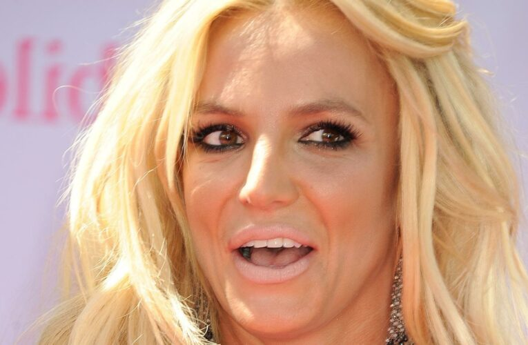 How Britney Spears Reportedly Felt Before Her Bombshell Court Appearance