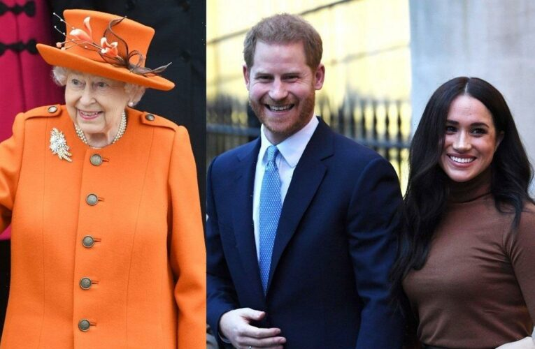 Prince Harry and Meghan Markle Introduce Baby Lili to The Queen via Video Call