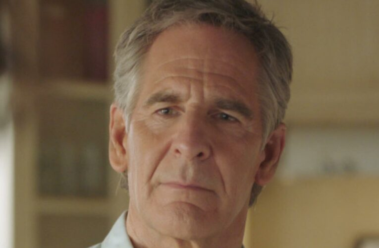 The Real Life Partners Of The Cast Of NCIS: New Orleans