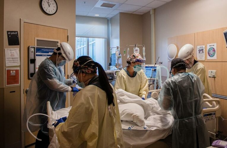 U.S. COVID-19 deaths top 600,000 amid growing concern about variant