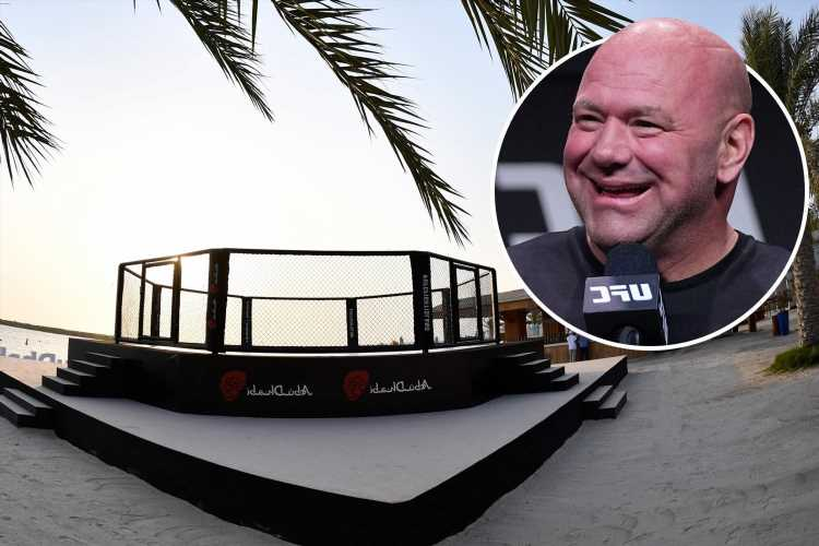 UFC chief Dana White announces return of Fight Island and says Abu Dhabi events are 'going to be even bigger'