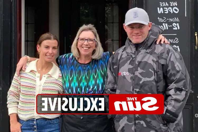 Wayne and Coleen Rooney treat their boys to bargain holiday with narrowboat trip