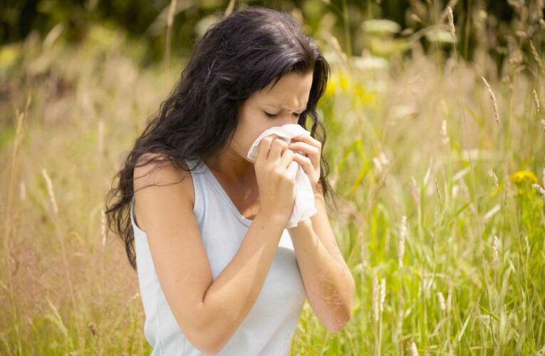 What is hay fever, can babies and pets get it, can you take tablets while pregnant and what causes the allergic reaction?