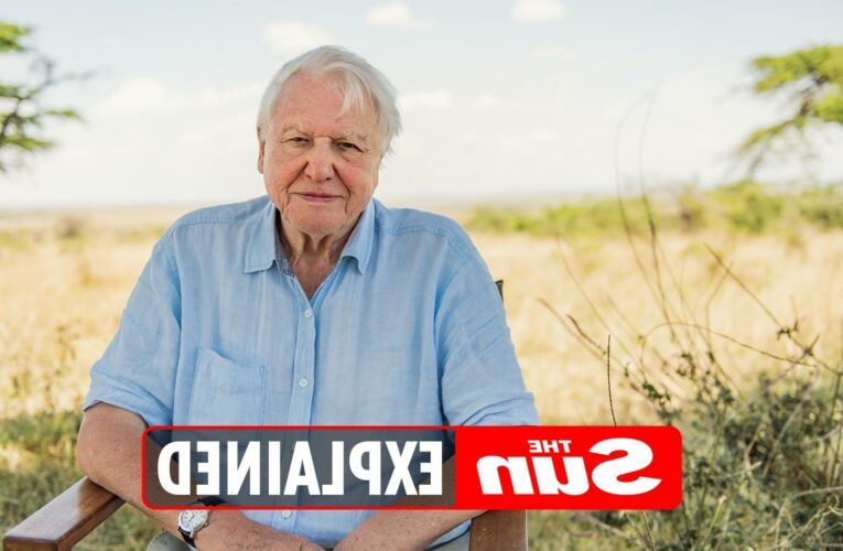 When is Sir David Attenborough Breaking Boundaries: The Science Of Our Planet released on Netflix?