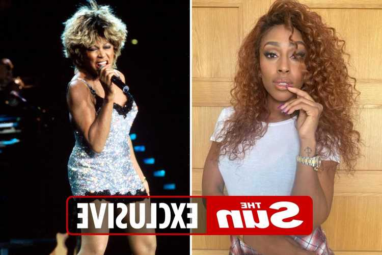 X Factor star Alexandra Burke to play Tina Turner in new big-budget film – her first ever movie role
