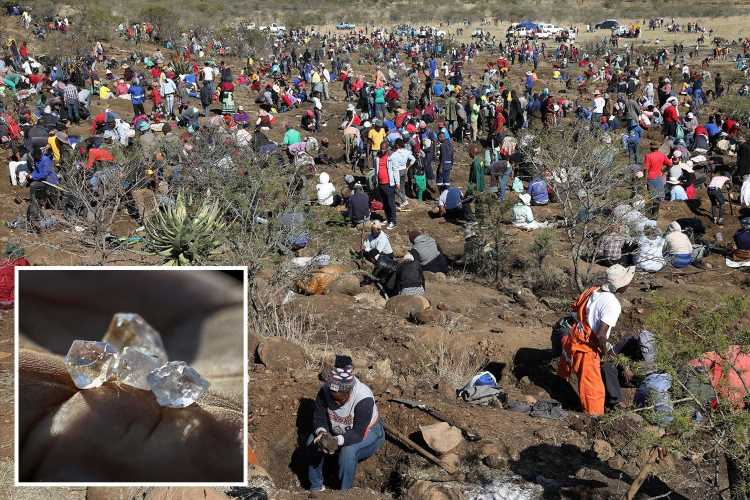 'Diamond rush' as hundreds armed with pickaxes flock to South African village after discovery of mystery stones