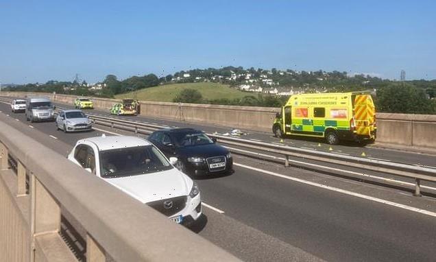 Devon pedestrian killed after being struck by an ambulance