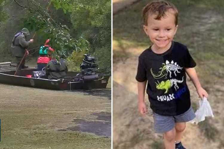 Fears for missing boy Ellis Boudean, 4, who vanished in 'dangerous' swamp
