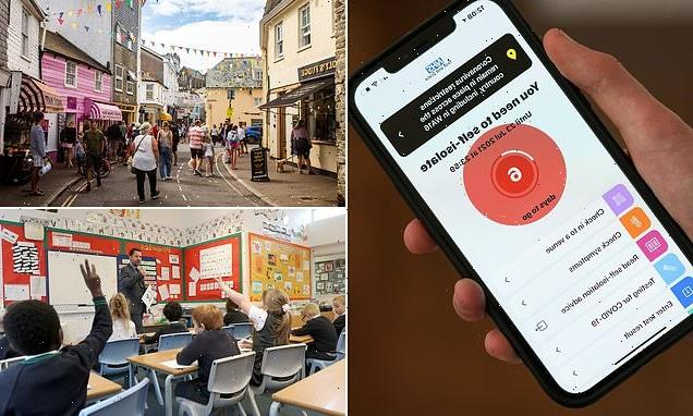 Holiday lettings boss warns NHS app could ruin staycations