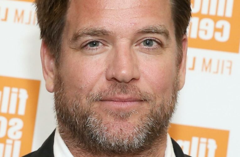 How Much Is NCIS Star Michael Weatherly Really Worth?