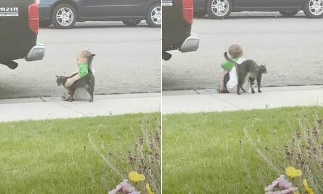 Idaho cat, Lily, consoles sad little boy sitting outside his home