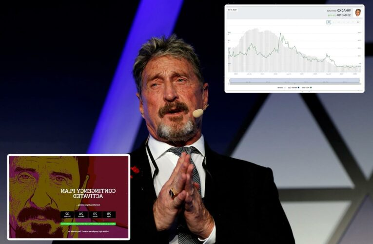 John McAfee 'contingency plan' site appears for two days – and his crypto Whackd token climbs Over 700% after 'suicide'