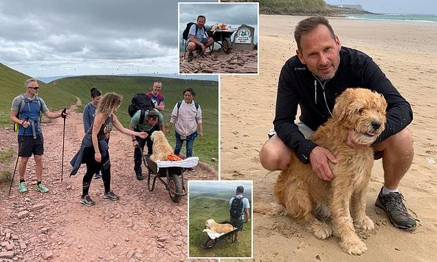 Man takes dying pet dog up favourite mountain in a wheelbarrow