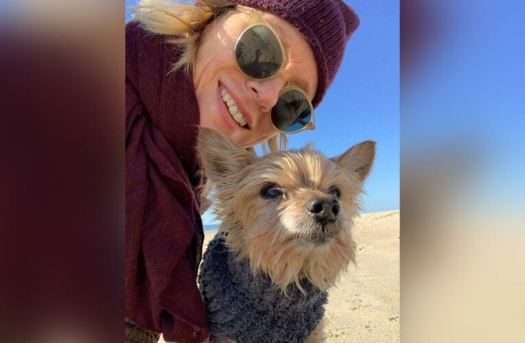 Naomi Watts Devastated by the Loss of Beloved Dog
