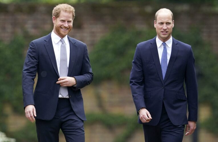 Prince Harry Was Trying 'to Engage' With Prince William at Statue Unveiling
