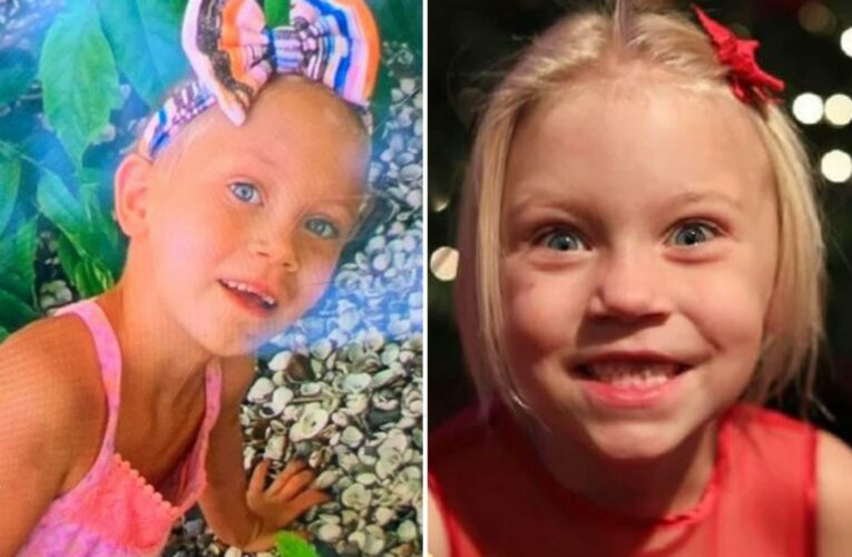 Summer Wells missing – Rescue charity joins effort to find Tennessee girl, 5, who vanished more than a month ago