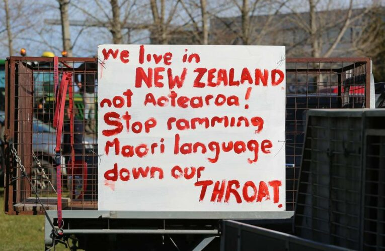Te reo Māori isn't being forced on NZ, we've just finally stopped suppressing the language – Gary Dell