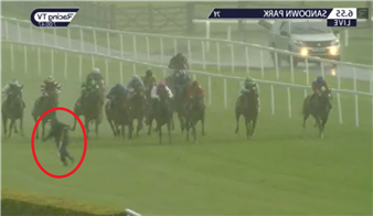 Watch unbelievable moment dopey groundsman gets fright of his life after failing to see 13 horses charge at him mid-race