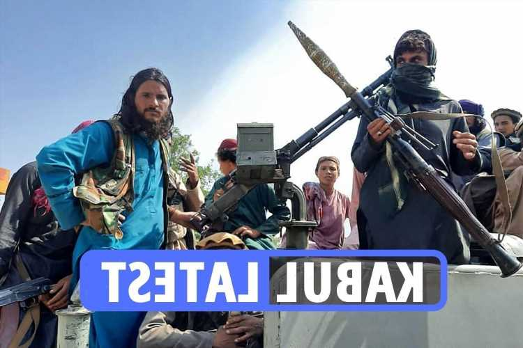 Afghanistan latest: Taliban fighters swarm on Kabul as UK ambassador to be airlifted out of war-torn capital