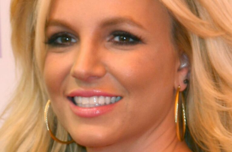 Britney Spears Speaks Out About Her Father Stepping Down As Her Conservator