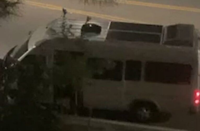 California deputies say woman 'safe' after possible kidnapping caught on alarming video