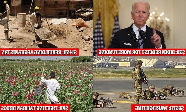 DOD watchdog tears into 'staggering' mistakes from Bush to Biden