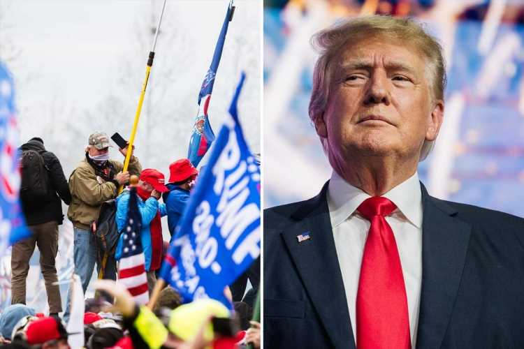 Homeland Security warns MAGA supporters are threatening violence if Trump isn't reinstated TODAY