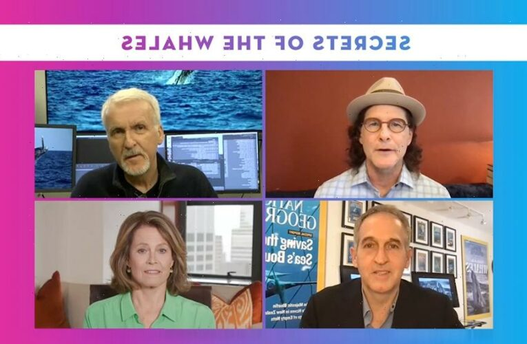 James Cameron And Sigourney Weaver On Sharing Leviathan-Sized Discoveries In 'Secrets Of The Whales' – Contenders TV: The Nominees