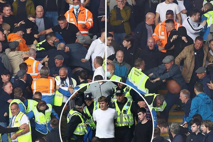 Millwall fans fight in stands as police and stewards step in to break up brawls at heated Championship clash vs Cardiff